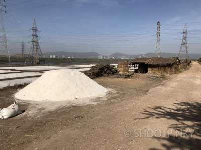 Salt farm thane