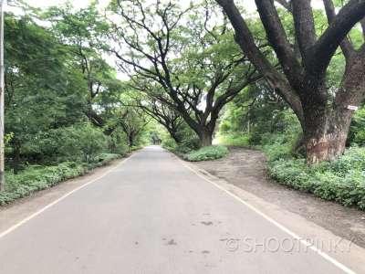 Aarey colony road location